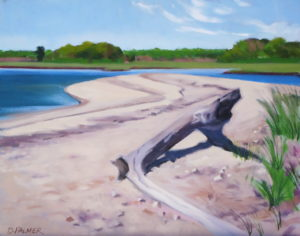 "Gerard Point Driftwood - Oil  14"" x 11""  $680"